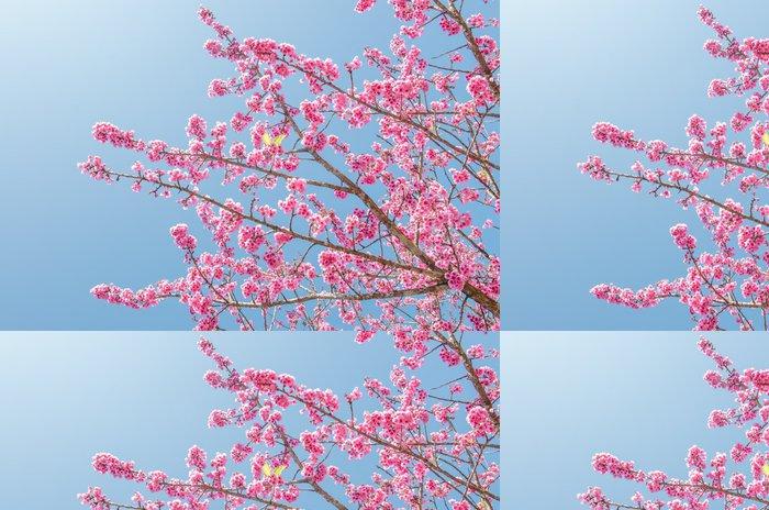 Vinylová Tapeta Sakura květiny kvetoucí na větvi stromu - Květiny