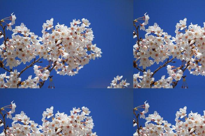 Tapeta Pixerstick Sakurai - Roční období