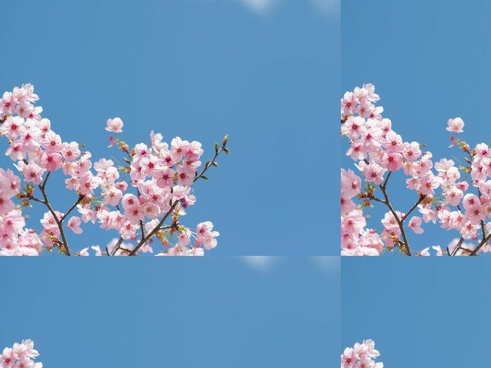 Vinylová Tapeta Sakurai - Květiny