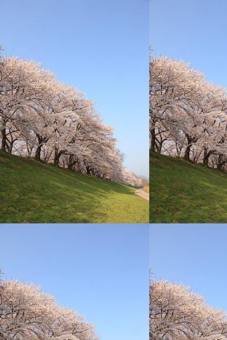 Tapeta Pixerstick Sakurai - Květiny