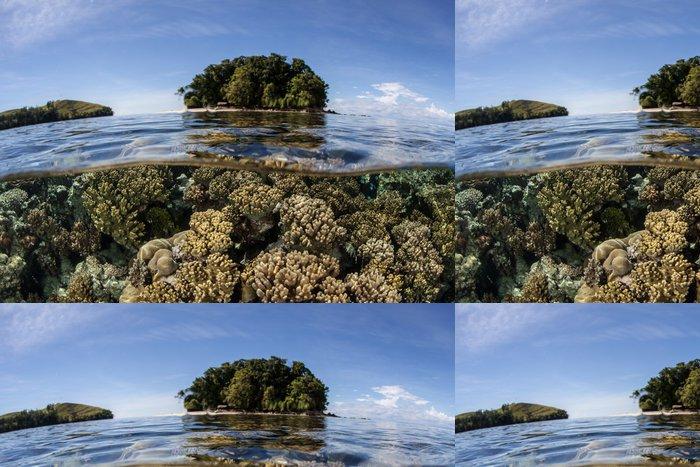 Vinylová Tapeta Šalamounovy ostrovy Coral Reef - Podvodní svět