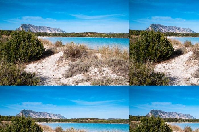 Tapeta Pixerstick Sardinia, Itálie: Cala Brandichi pláž, v blízkosti San Teodoro. - Prázdniny