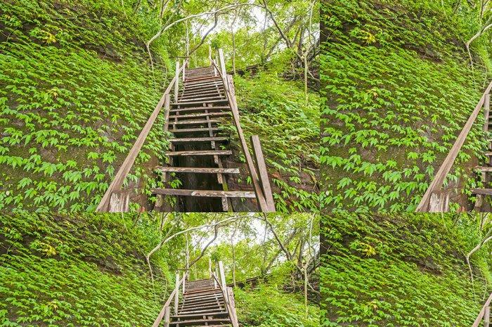 Tapeta Pixerstick Schodiště v džungli - Příroda a divočina