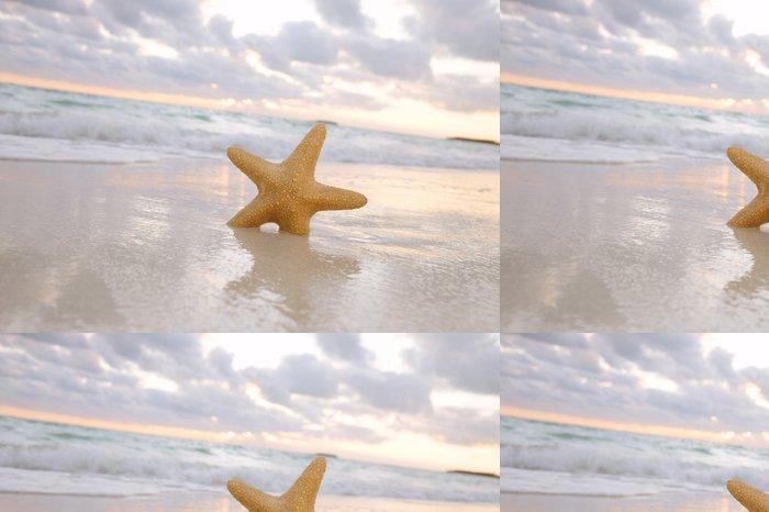 Tapeta Pixerstick Sea star hvězdice na pláži, modré moře a slunce čas, mělké d - Prázdniny