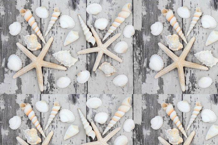 Tapeta Pixerstick Seashell Beauty - Vodní a mořský život