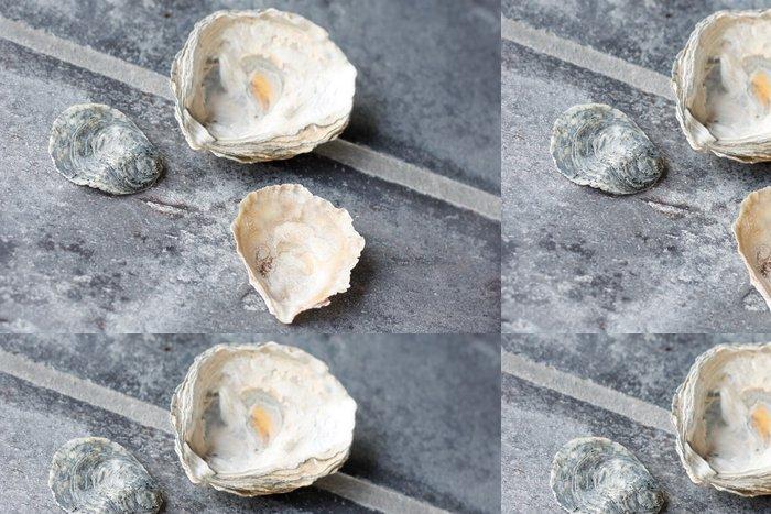 Vinylová Tapeta Seashells - Voda