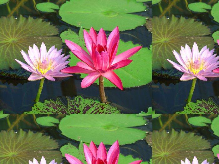 Tapeta Pixerstick Seerosenpaar - Květiny