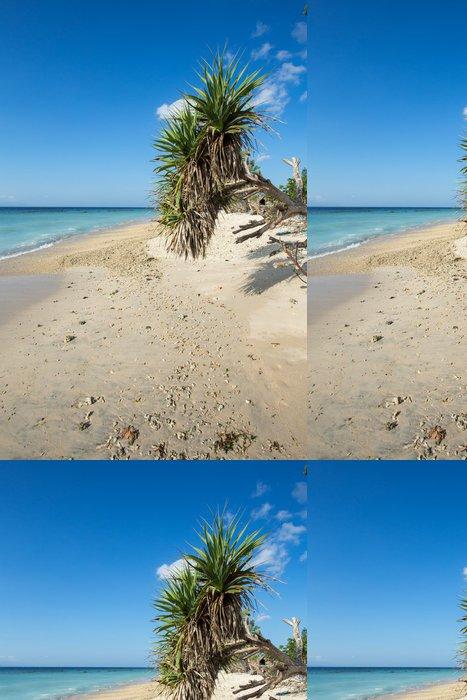 Tapeta Pixerstick Sen pláž, Bali Indonésie, ostrov Nusa Penida - Voda