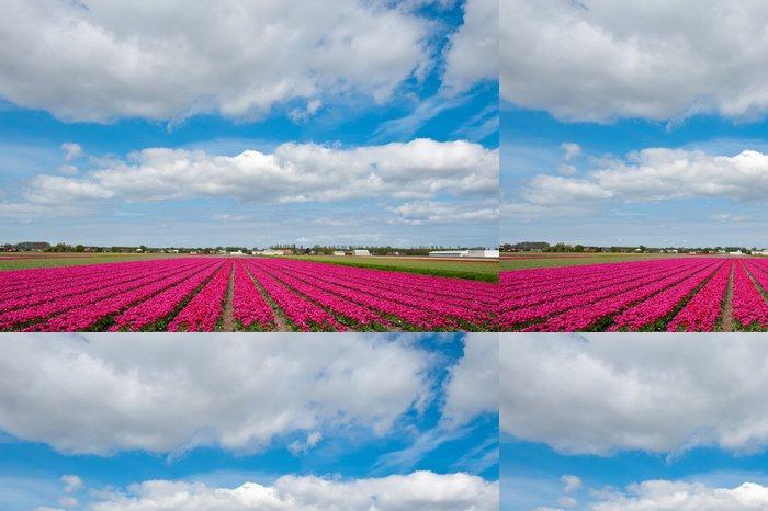 Vinylová Tapeta Sezóna tulipánů - Roční období