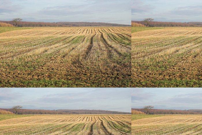 Tapeta Pixerstick Sillon - Zemědělství