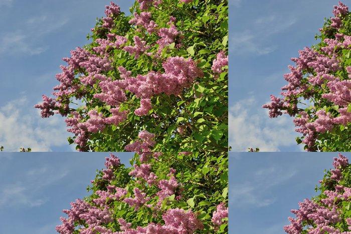 Tapeta Pixerstick Siréna - Květiny