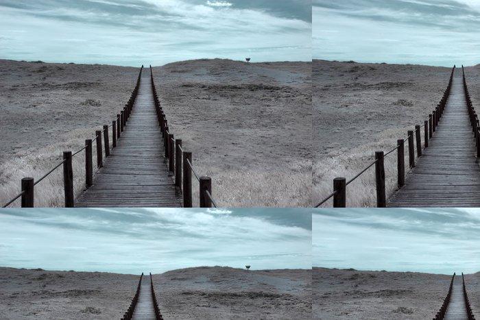 Tapeta Pixerstick Široký duna - Jiné