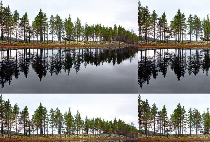 Tapeta Pixerstick Skandinávské jezero s jehličnany - Evropa
