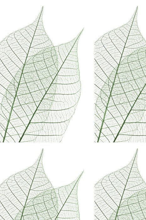 Tapeta Pixerstick Skeleton Leaves - Struktury