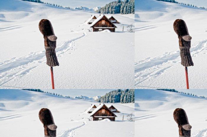 Vinylová Tapeta Ski pole s rukavicí - Roční období