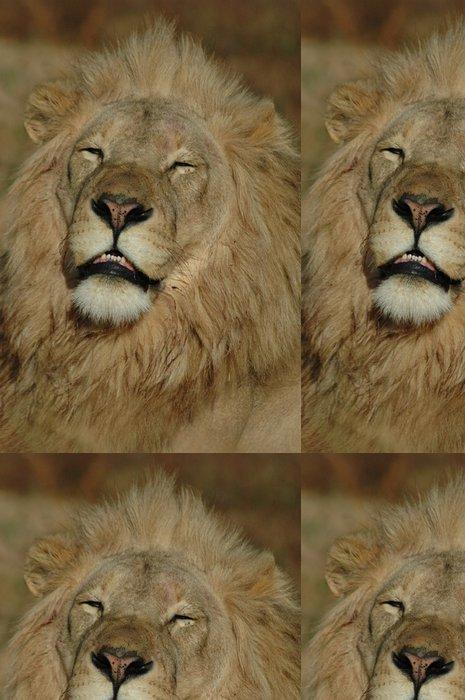 Tapeta Pixerstick Sleepy Lion - Témata
