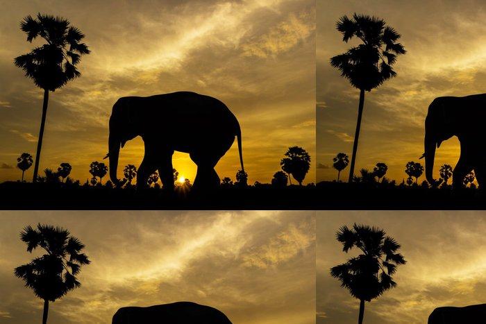Vinylová Tapeta Slon a palma na západ slunce - Savci
