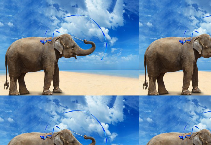 Tapeta Pixerstick Slon na pláži - Témata