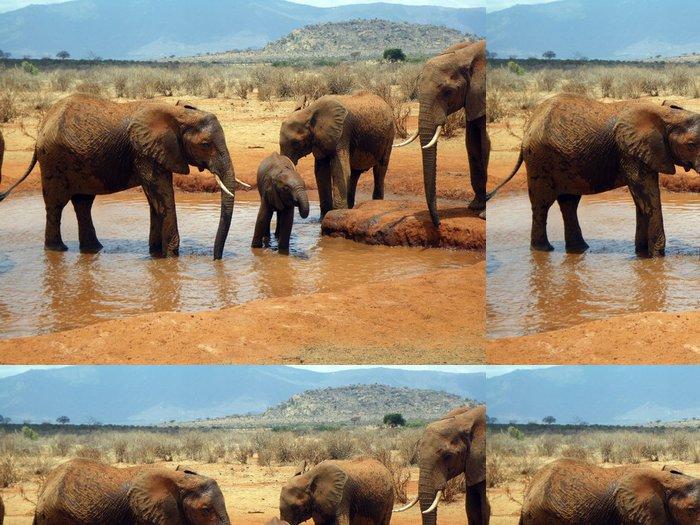 Tapeta Pixerstick Sloni v Tsavo - Témata