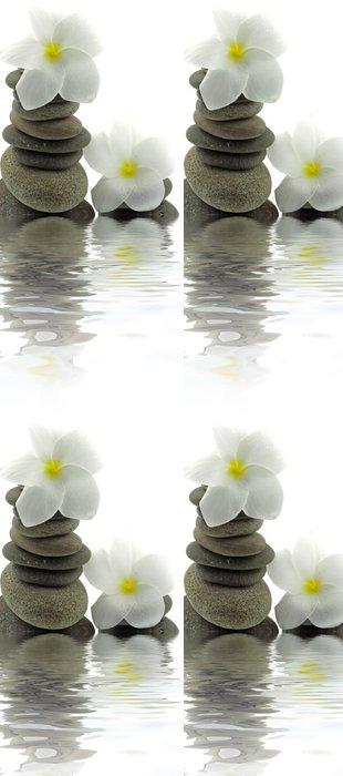 Tapeta Pixerstick Složení šindel bílé květy frangipani bílém pozadí - Struktury