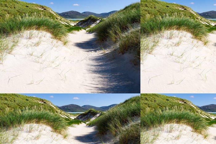 Tapeta Pixerstick Slunečné pobřeží s písečnými dunami, ve vysoké trávě a modrou oblohu - Prázdniny