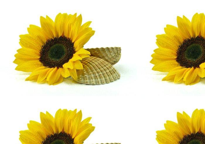 Tapeta Pixerstick Slunečnice s mušlí na bílém pozadí - Květiny