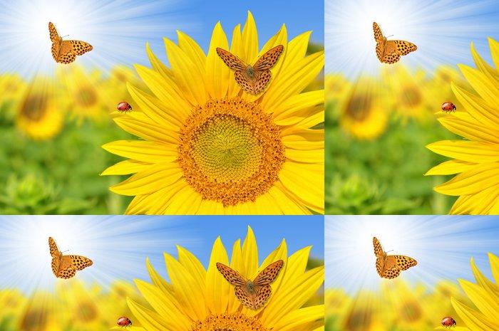 Tapeta Pixerstick Slunečnicové pole s motýly - Témata