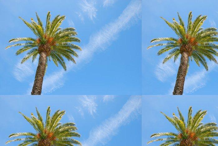 Tapeta Pixerstick Slunný Palm Tree - Prázdniny