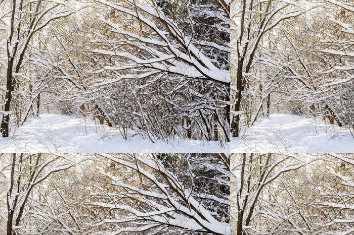 Vinylová Tapeta Snowy zimní les - Hory