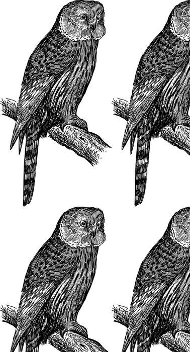 Tapeta Pixerstick Sova - Ptáci