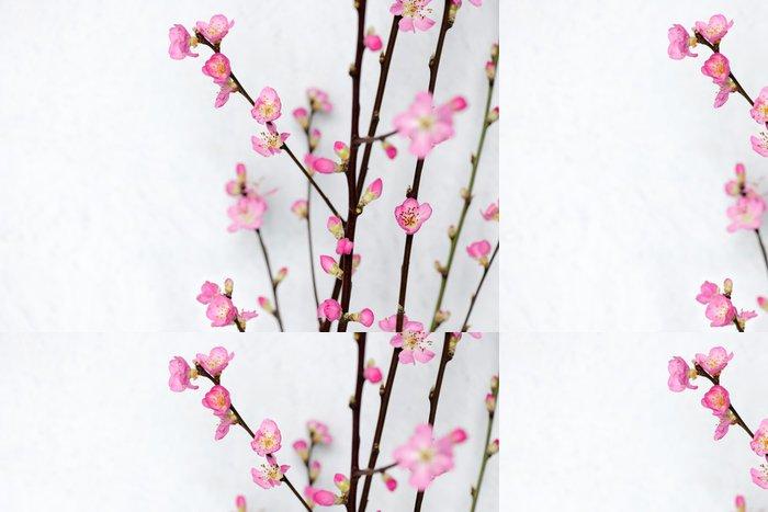 Tapeta Pixerstick Spring flowers - Mezinárodní svátky