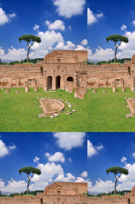 Tapeta Pixerstick Stadium of Domitian na Palatine kopci - Evropa