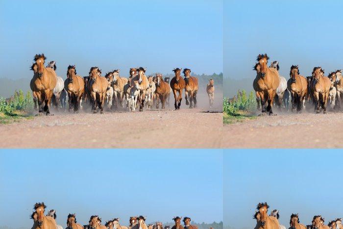 Tapeta Pixerstick Stádo koní a hříbat běží na silnici - Savci