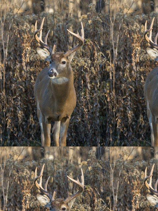 Tapeta Pixerstick Stálý Deer - Témata