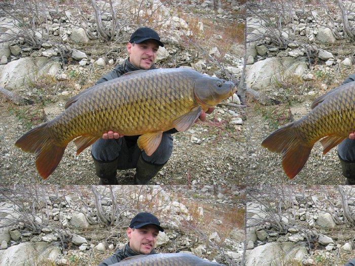 Tapeta Pixerstick Šťastný rybář drží velké kapra - Outdoorové sporty