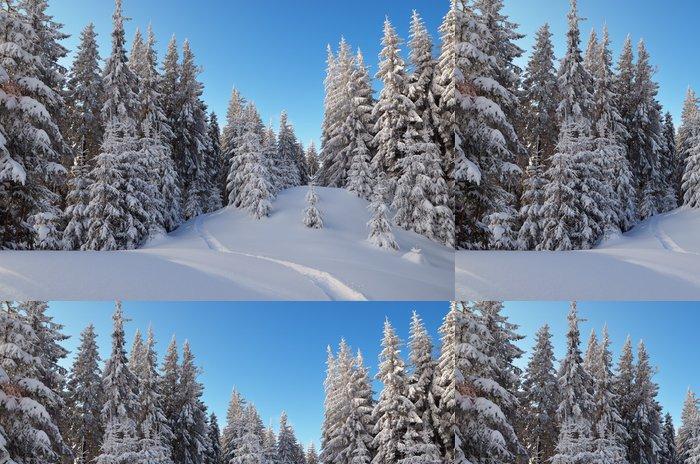 Tapeta Pixerstick Stezka ve sněhu v lese - Roční období