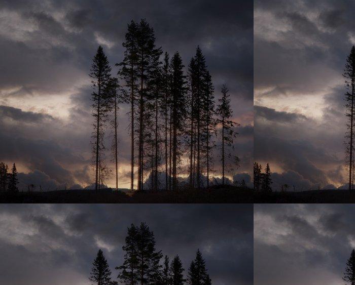 Tapeta Pixerstick Strašidelné stromy - Stromy