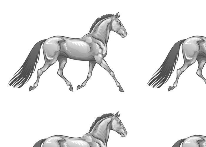 Tapeta Pixerstick Stříbrný kůň - Nálepka na stěny