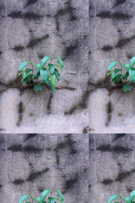 Tapeta Pixerstick Strom na zeď. - Stromy