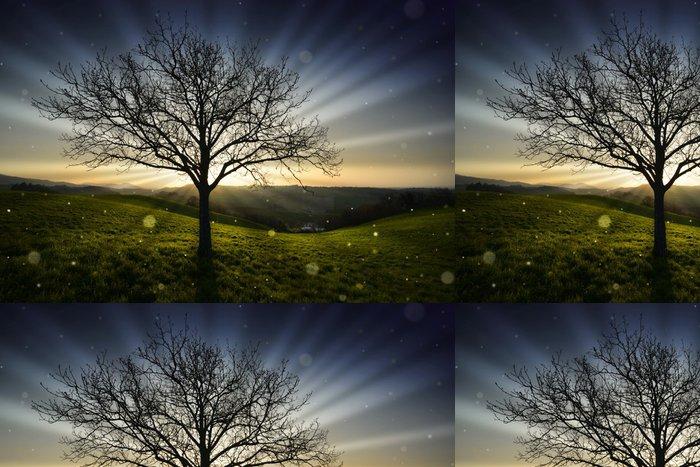 Tapeta Pixerstick Strom při západu slunce - Příroda a divočina