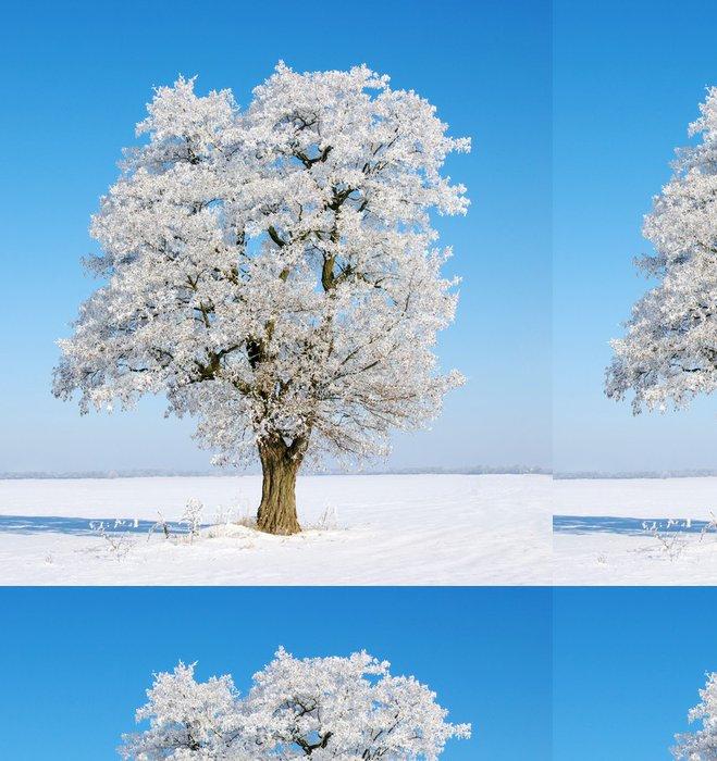 Vinylová Tapeta Strom v mrazu - Roční období