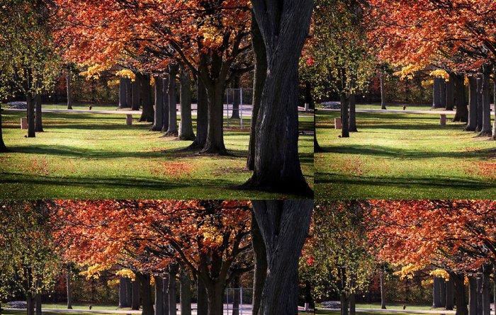 Tapeta Pixerstick Stromy na podzim v řadě - Roční období