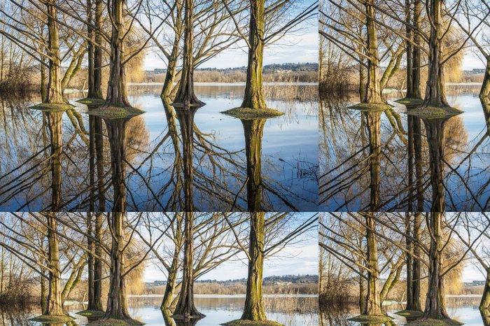 Tapeta Pixerstick Stromy v rybníku - Evropa