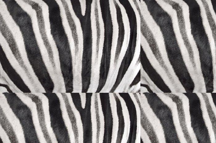 Tapeta Pixerstick Struktura kůže zebra - Struktury