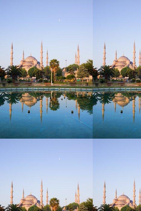 Tapeta Pixerstick Sultan Ahmet Camii v Istanbulu - Veřejné budovy