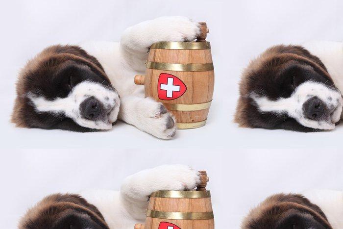 Tapeta Pixerstick Světec Bernard štěně s záchranného barel kolem krku - Savci