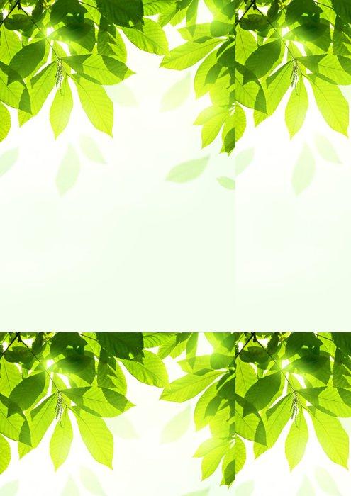 Tapeta Pixerstick Svěží letní Listy - Roční období
