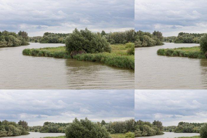 """Vinylová Tapeta Swamp národní park """"De Biesbosch"""" v Nizozemsku - Příroda a divočina"""