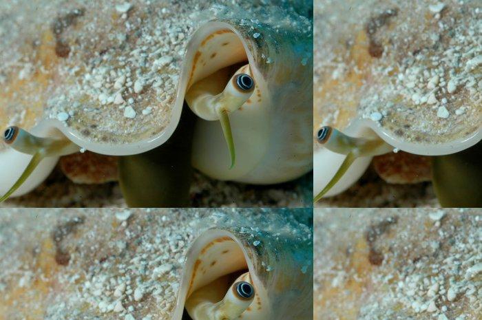 Tapeta Pixerstick Sxm7 - Vodní a mořský život