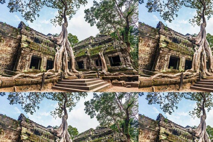 Vinylová Tapeta Ta Temple Prohm. Angkor. Kambodža - Asie
